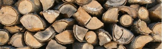 Cord Wood Boilers